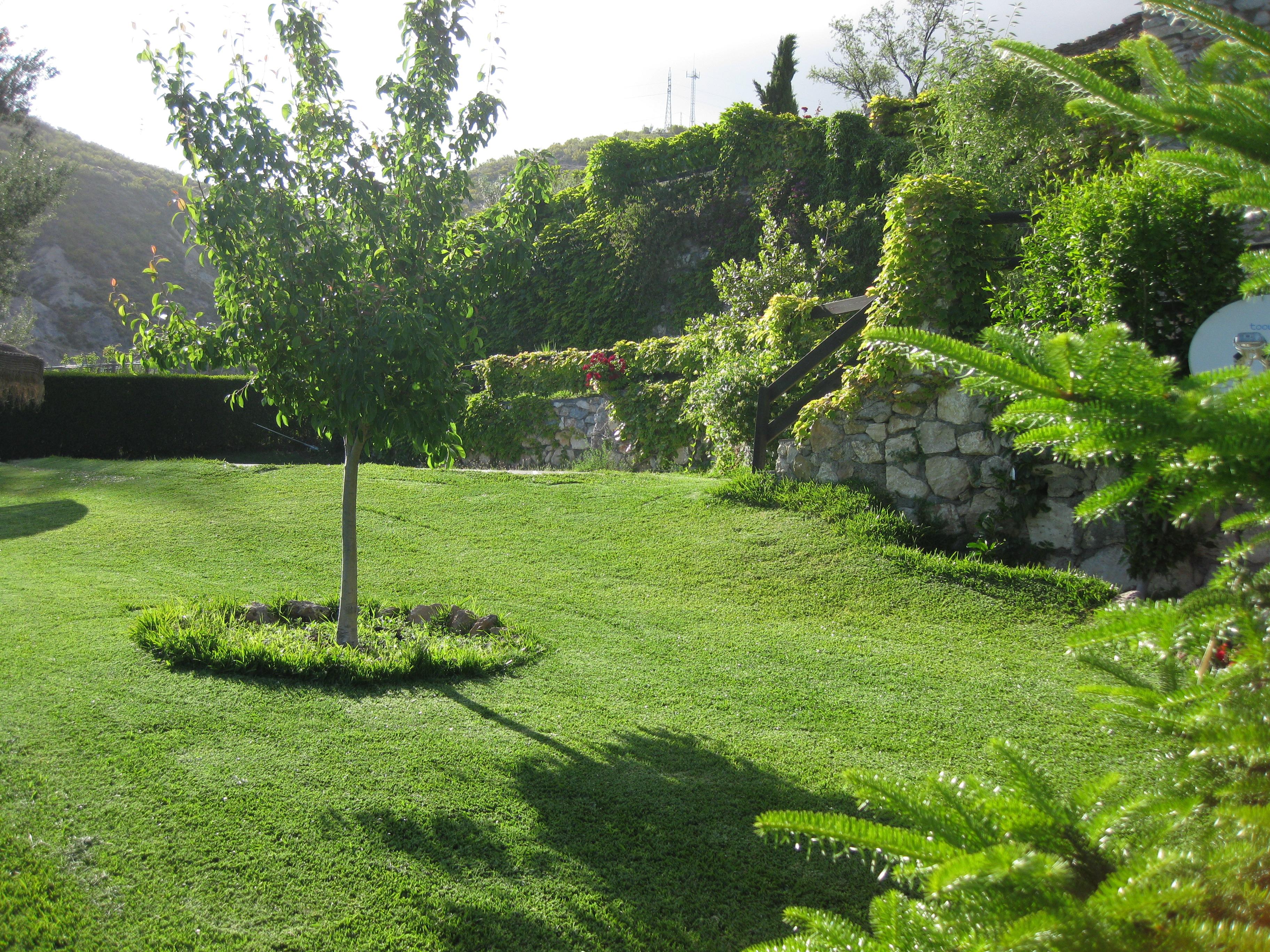 18 Vegetación