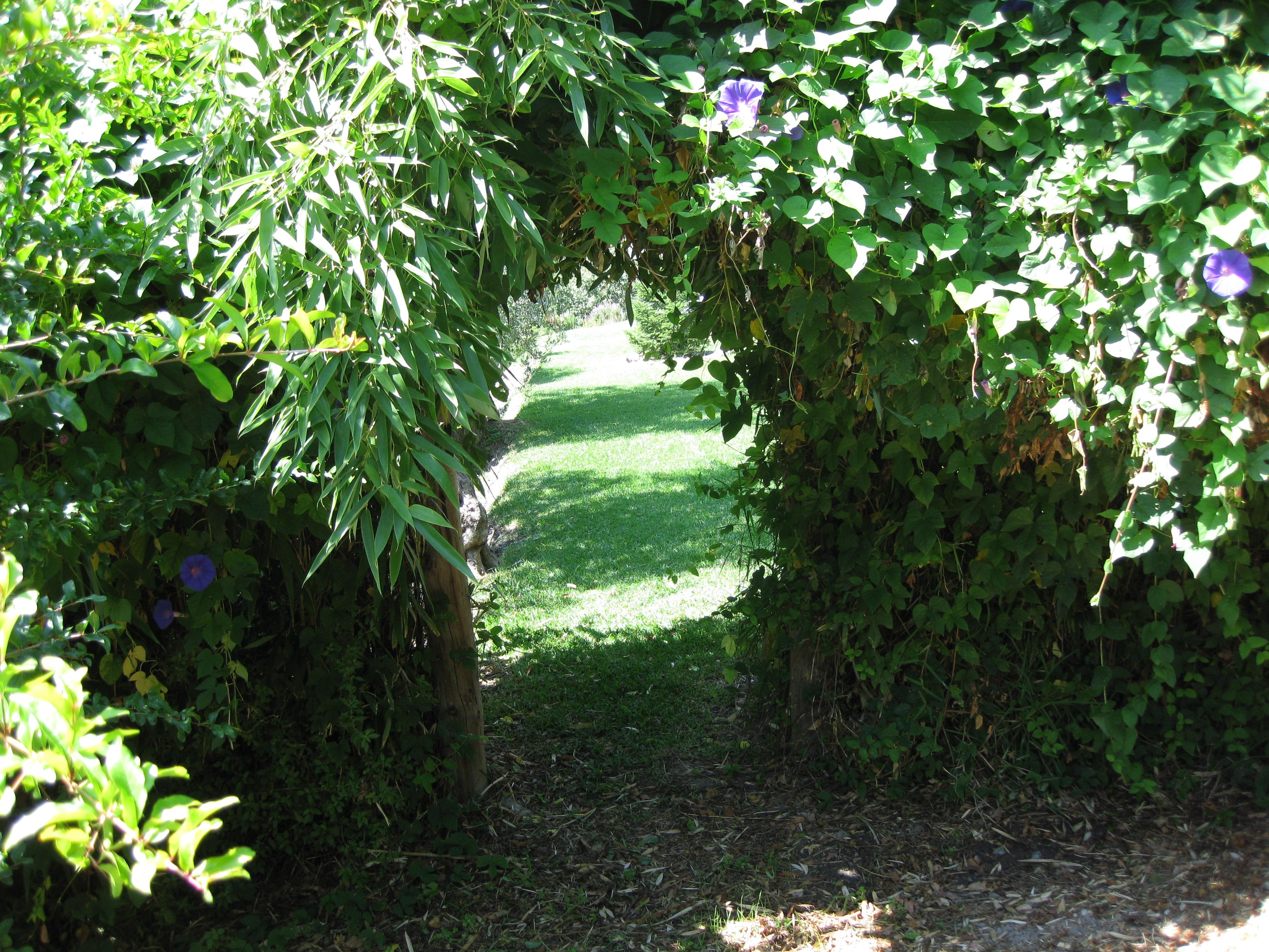 21 Arco en jardín