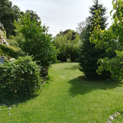 Árboles jardín